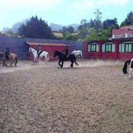 Bonos para Clases de Equitación Nivel Iniciación para todas las edades